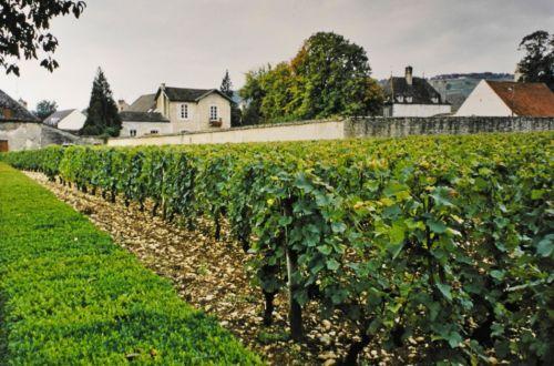 2001-APV-Reise-Burgund 9
