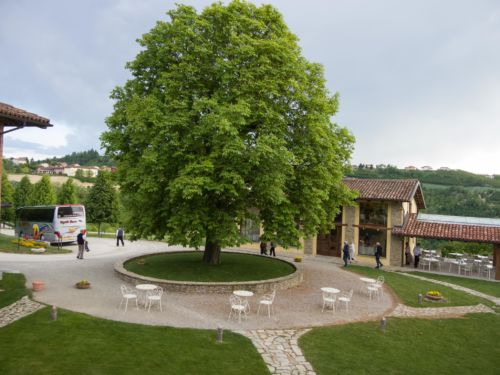2017-APV-Reise-Piemont 11